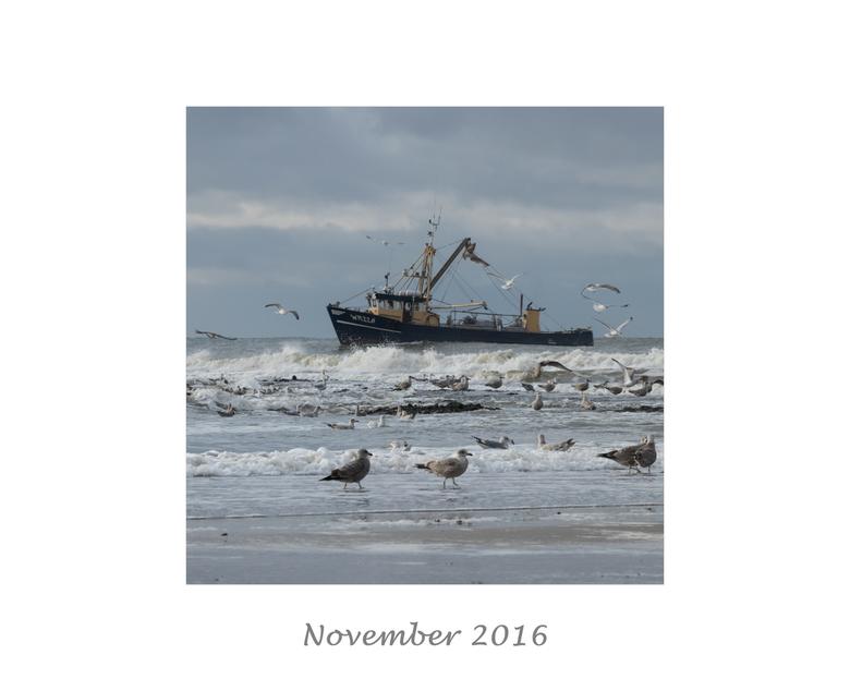 November - Jaaroverzicht 2016<br /> November