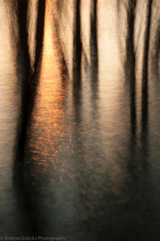 Rising Sun - Nog eentje uit de serie De Waal/bewogen. Voor mij verveeld het nooit. Heerlijk om in die stilte aan het water te staan met de zonsopgang.