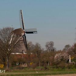 Molen bij de Steenenkamer(Deventer-IJssel) voor Bets