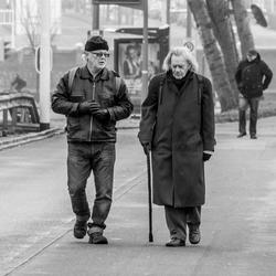 De wandelaars