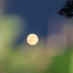 -morgen volle maan-
