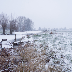 Winter in de Polder