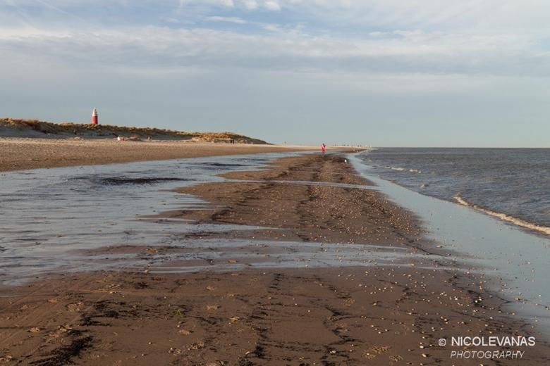 Texel aan zee. - Wind, zand, duinen, zeewater, eb, vuurtoren, duinhalmen, meeuwen, schelpen, mooie wolken.<br /> <br /> De ingrediënten om een heerl