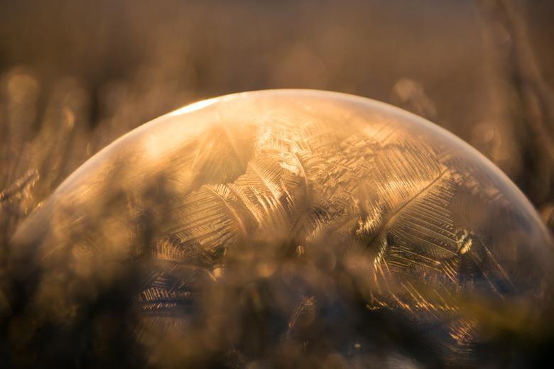 Bevroren zeepbel -