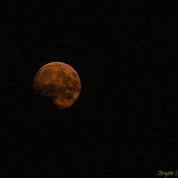 maan van de nacht donderdag op vrijdag