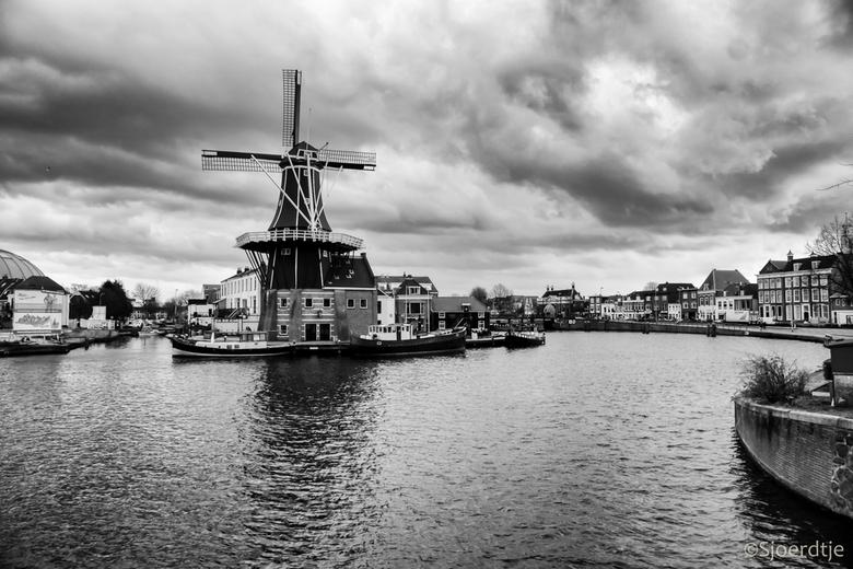 Molen  - Haarlem is een zeer fotogenieke stad. Zeker een aanrader. Foto van vorig jaar. <br /> <br /> Hartelijk dank voor jullie reacties. <br /> <