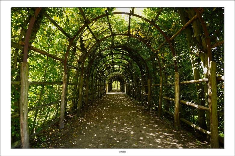 Berceau - Een berceau, of loofgang, is een pad waarbij aan beide zijden heggen staan, die aan de bovenzijde met elkaar zijn verbonden, zodat een soort