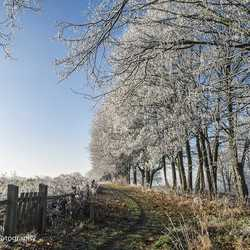 Gulperberg met uitsneeuwende mist
