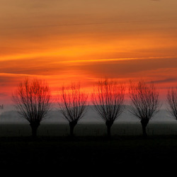 Sunrise in de Betuwe