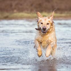 Running!!