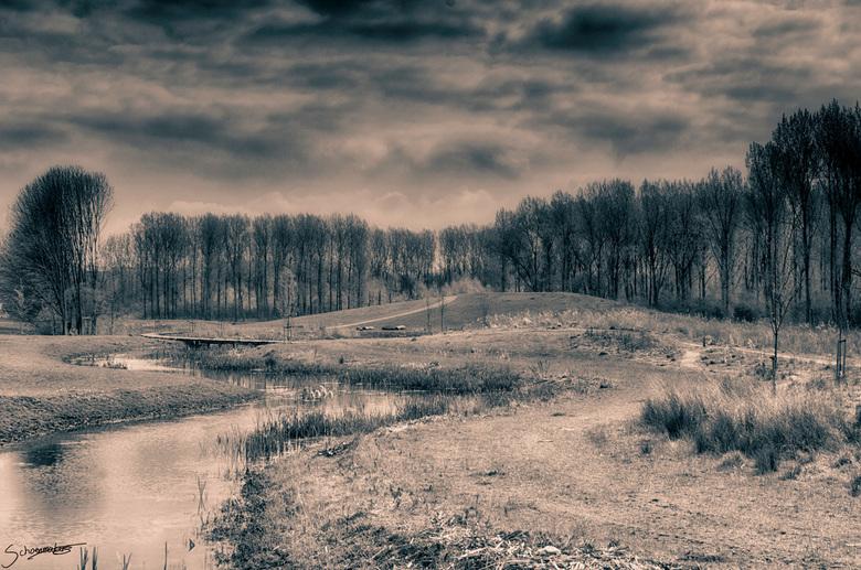 Het klauterwoud - Het klauterwoud in de Broekpolder, een speelbos speciaal voor kinderen.<br /> Dit is een doorkijkje in het klauterwoud, met de luch