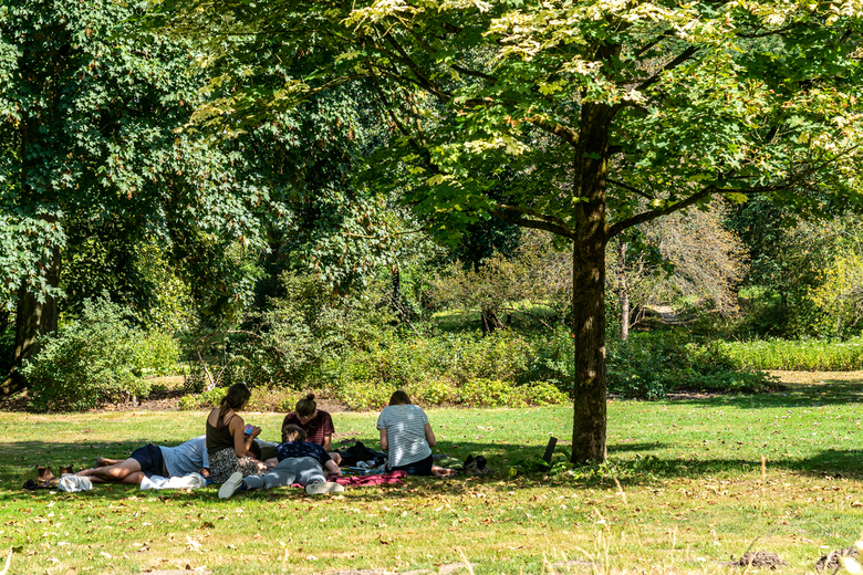Intro gedurende Corona - Tijdens de erg warme intro van de Universiteit Wageningen zochten de studenten in kleine groepen hun schaduw op.<br /> Wel w