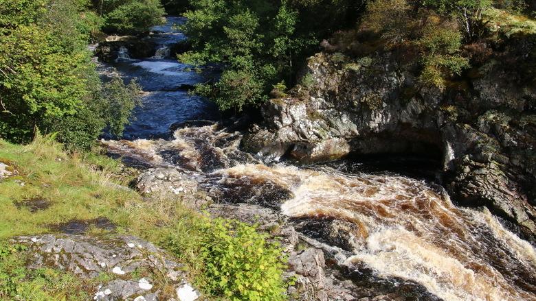 Schotland -3- - Vergeleken bij de watervallen van IJsland is de waterval van Shin in de Schotse Hooglanden maar een kleintje. Maar hier zwemt wel de w