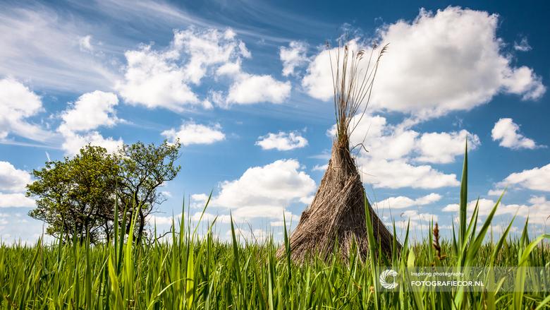 Wigwam in de polder - Struinend door het Nationaal landschap van de Wieden & Weerribben kun je rietschoven vinden van de rietsnijders. Met een bee