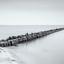 Aan het IJsselmeer