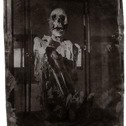 mummie Koninklijk museum Brussel
