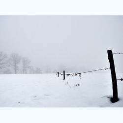 mistige winterochtend