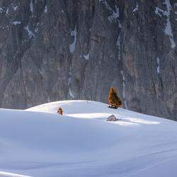 Dolomites magic