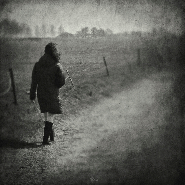 31 Days of Stillness / Strolling