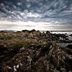Rauwe Schotse kust