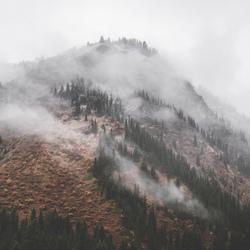 Tussen Herfst en Winter.