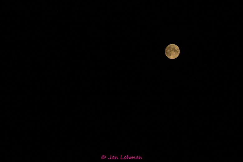 Volle maan -