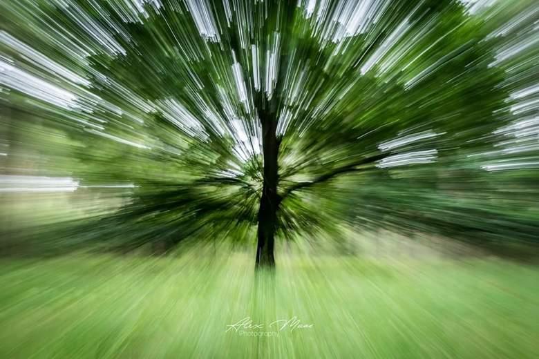 When life gets blurry, adjust your focus  - Experiment met inzoomen tijdens het fotograferen. Leuk effect krijg je dan.