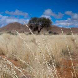 Echt Namibie