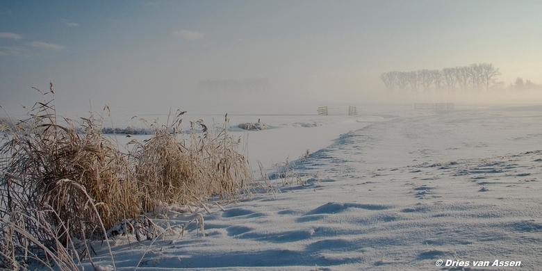 Winterlandschap - Buitengebied van Kampen, opkomende zon, mist en sneeuw maakt het plaatje compleet.