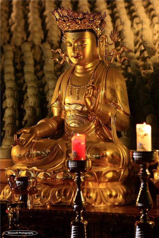 Boedha - Genomen in een tempel in Korea