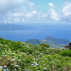 Azoren blauw