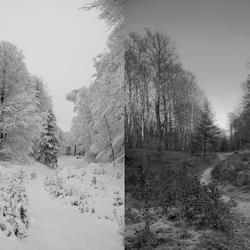 Wintersfeer 2012 versus 2011