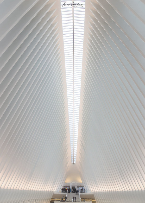 Oculus - Trade Center Transportation hub - New York | USA