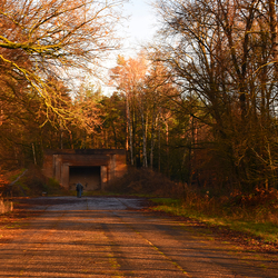DSC_0449  Bunker.