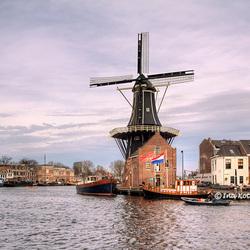 Gespot in Haarlem