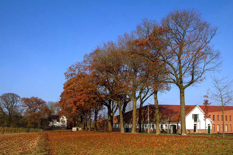 Abdij Koningsberg - Nabij Oosterbeek