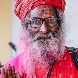 Indiaas mannetje in roze