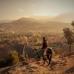 De man en zijn ezeltje