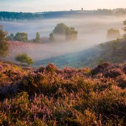 Foggy Posbank