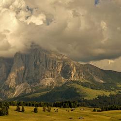 Mountain view................