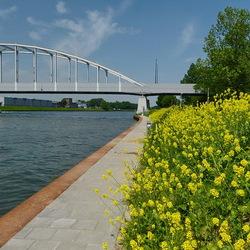 Amsterdam Rijnkanaal en omgeving 409.