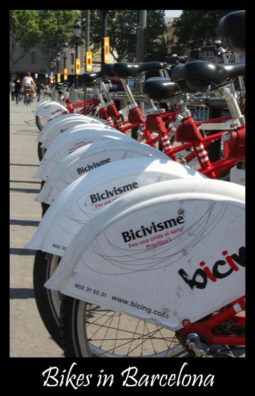 Bikes - Foto is weer van een tijdje geleden maar vond de fietsen toch wel grappig net zoals in Brussel.