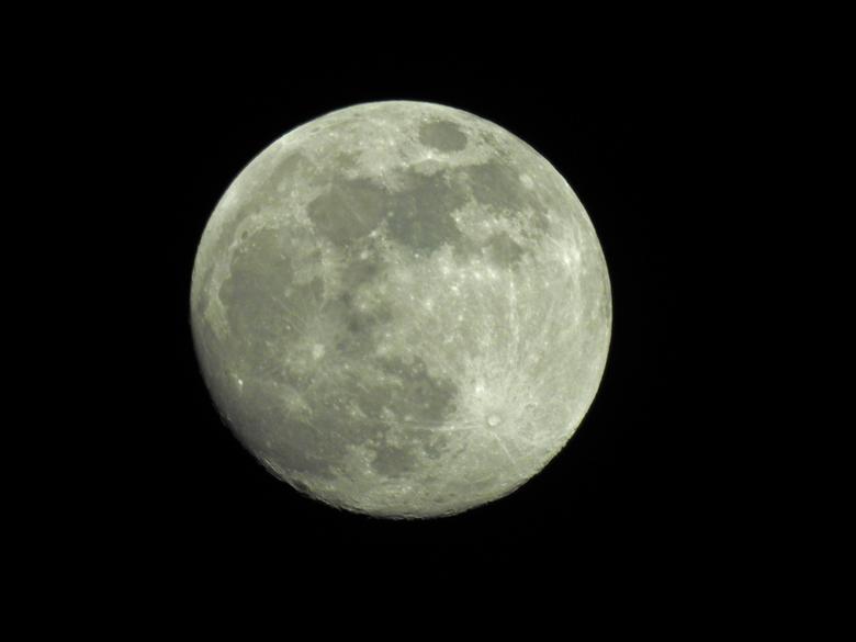 Maan 20-04-2016 - Heldere nacht met volle maan. mooi moment om het maximale zoombereik van de P900 te gebruiken. Niet gecropt.