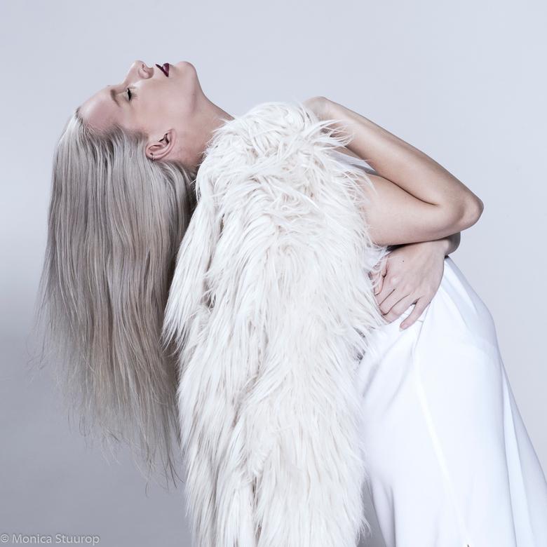 Cotton Grey -