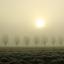 Prachtige ochtend in de mist gisteren.