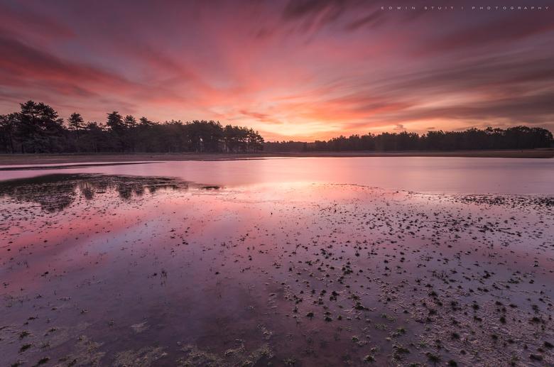 Rode zonsopkomst - Fietsend in het donker over het Dwingelderveld naar deze van te voren gekozen locatie is op zich al een beleving en als je daar dan