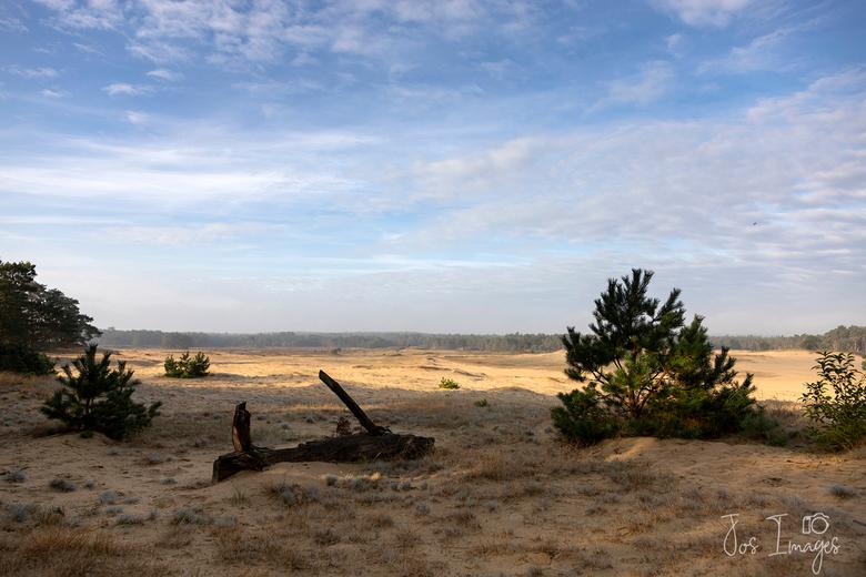 Mosselse Zand - Vorige week er even tussenuit geweest.<br /> Groet,<br /> Jos