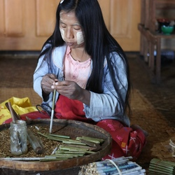 Sigaren maken in Myanmar