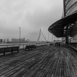 **** Rotterdam