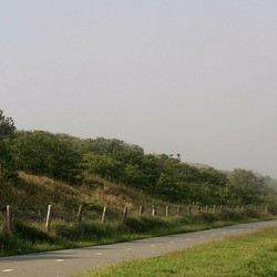 Uit de mist